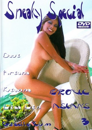 Hot Body Sneaky Special: Erotic Asians 3 (2004)