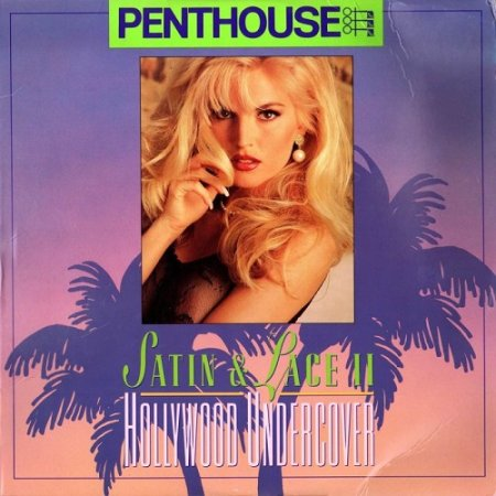 Penthouse: Satin & Lace II: Hollywood Undercover (1993)