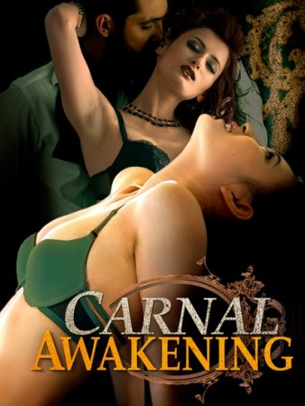 Carnal Awakenings (2013)