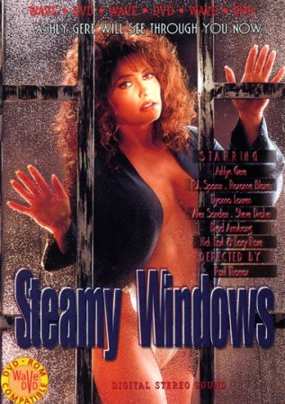 Steamy Windows (1993)